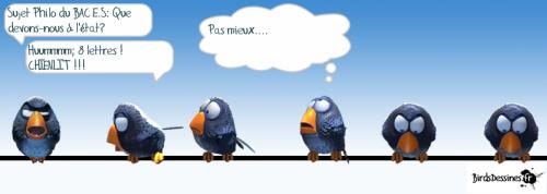 birds,philo,bac,bac philo